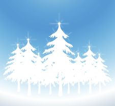 Free White Christmas Trees Royalty Free Stock Image - 6521116