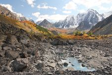 Free Mountain Peaks, Larch Forest And Small Lake Royalty Free Stock Photo - 6523585