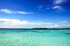 Free Landscape Of Maldivian Island Royalty Free Stock Photography - 6526777