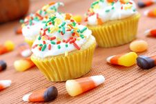 Free Seasonal Cupcakes Stock Image - 6528601