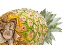 Free Fresh Pineapple Royalty Free Stock Images - 6528919