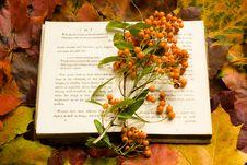 Autumn Book Royalty Free Stock Photo