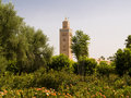Free Koutoubia Mosque Stock Photo - 6535040