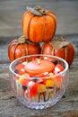 Free Autumn Still Life Stock Image - 6536751