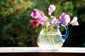 Free Jug With Sweet Peas Royalty Free Stock Photo - 6537515