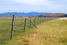 Free Pasture Field And Fence Stock Images - 6531174
