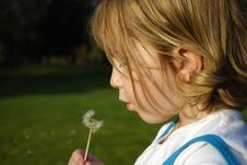 Free Girl Blowing Dandilion Royalty Free Stock Photo - 6532525