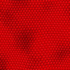 Reptile Skin Red Stock Photography