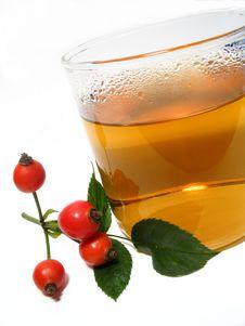 Hip Rose Tea Royalty Free Stock Image