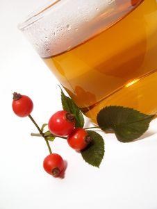 Hip Rose Tea Stock Image