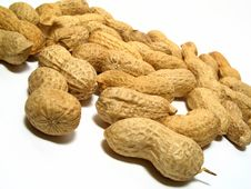 Free Peanuts Stock Photo - 6535010