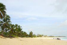 Free Ride On Horseback Along The Beach Stock Photography - 6535282