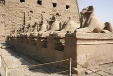 Free Temple Of Karnak Royalty Free Stock Images - 6535399