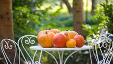 Free Pumpkins Stock Image - 6538011