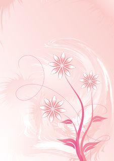 Free Decorative Floral Stock Photo - 6538040