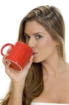 Free Lady Drinking With Coffee Mug Stock Photography - 6538552