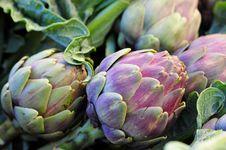 Free Artichoke, Unblown Flower Royalty Free Stock Image - 65322956