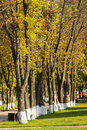 Free Autumn Alley Stock Photography - 6540942