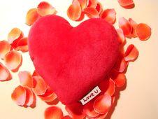 Love, Heart & Petals Royalty Free Stock Photo