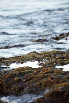 Free Foreshore Stock Photos - 6541583