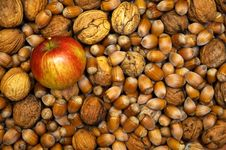 Free Apple And Nuts Stock Image - 6541831