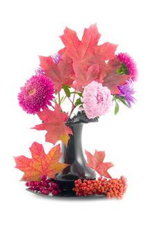 Free Red Maple Leaves In Black Vase Stock Photography - 6542732