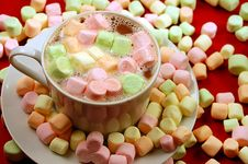 Free Hot Chocolate With Marshmallows Stock Image - 6544021