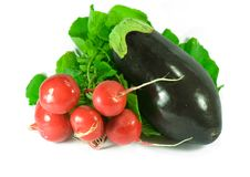 Free Red Radish And Eggplant Stock Photos - 6544383