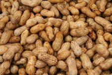 Free Peanuts Royalty Free Stock Photo - 6545805