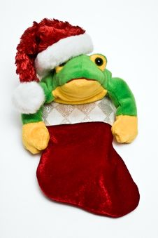Free Froggy Christmas Stock Photos - 6546253