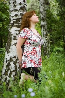 Free The Girl Leans Against A Birch Stock Photography - 6546692