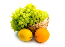 Free Basket With Green Grapes And Citruses Royalty Free Stock Images - 6546699