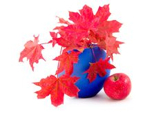 Free Red Maple Leaves Stock Image - 6546781