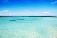 Free Landscape Of Maldivian Island Royalty Free Stock Image - 6546906