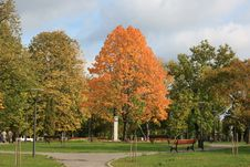 Free Park In Lithiania Royalty Free Stock Image - 6548976