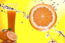 Free Orange Royalty Free Stock Photos - 6549138