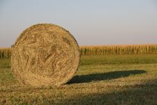 Free Straw Bale Stock Photography - 6549462