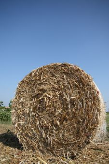 Free Straw Bale Stock Images - 6549514