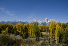 Free Grand Teton National Park Royalty Free Stock Images - 6549689