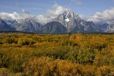 Free Grand Teton National Park Royalty Free Stock Images - 6549819