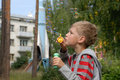 Free Boy With Soap Bubbles Stock Image - 6551661
