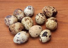 Free Quail Eggs Royalty Free Stock Photography - 6550817