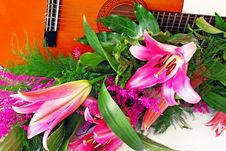 Free Pink Lily Guitar Composition Royalty Free Stock Photos - 6551288