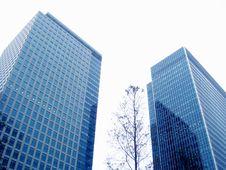 Free Skyscraper Stock Image - 6551381