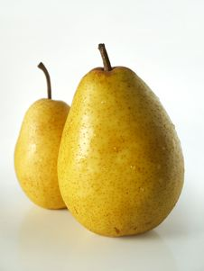 Free Two Big Yellow Pears Royalty Free Stock Image - 6552186