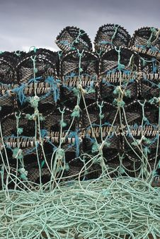 Free Lobster Baskets Royalty Free Stock Photo - 6553575