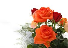 Free Beautiful Rose With Drops Of Water Royalty Free Stock Image - 6554176