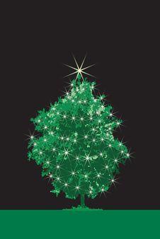 Free CHRISTMAS TREE Stock Photography - 6555972