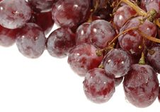 Free Grapes Isolated On White Royalty Free Stock Photography - 6561967