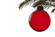 Free Christmas Tree Ball Royalty Free Stock Photos - 6562358